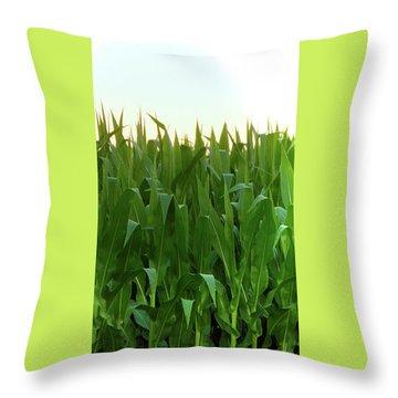 Corn Of July Throw Pillow