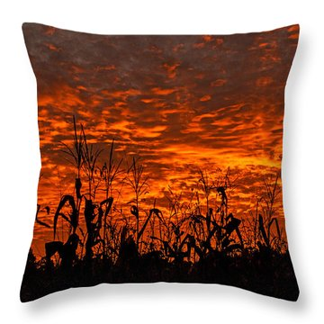 Corn Under A Fiery Sky Throw Pillow