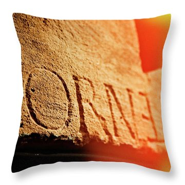 Throw Pillow featuring the photograph Cornelian by Michael Hope