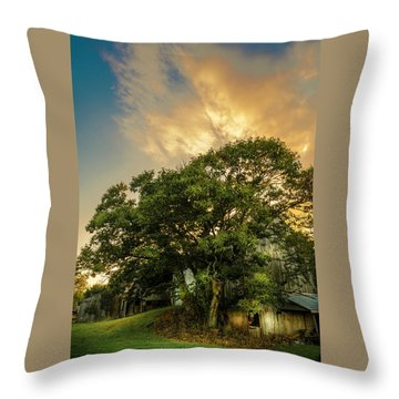 Throw Pillow featuring the photograph Corner Oak by Marvin Spates