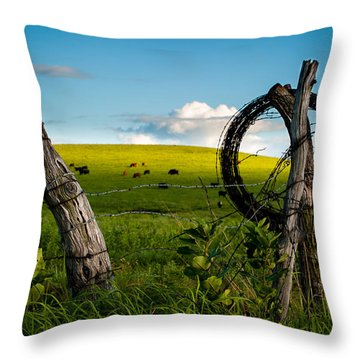 Throw Pillow featuring the photograph Corner Post by Jeff Phillippi
