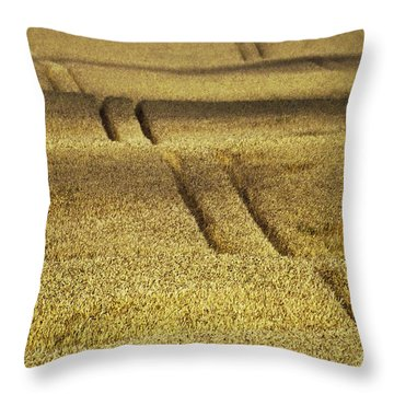 Cornfield Throw Pillow by Heiko Koehrer-Wagner