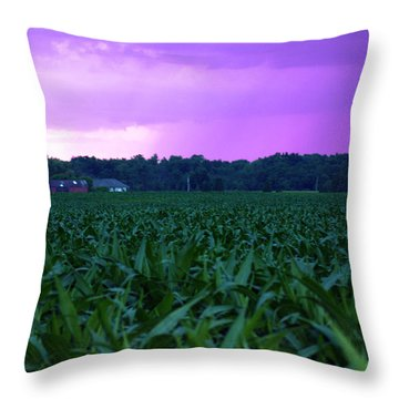 Cornfield Landscapes Purple Rain Throw Pillow by Cathy  Beharriell
