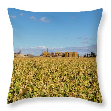 Cornfiled Throw Pillow