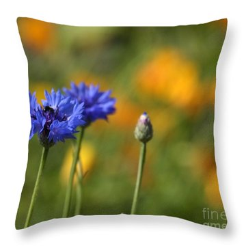 Cornflowers -2- Throw Pillow
