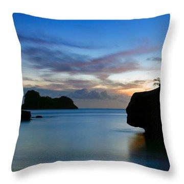 Coromandel Dawn Throw Pillow