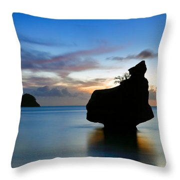 Coromandel Dawn Throw Pillow