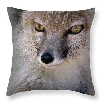 Throw Pillow featuring the photograph Corsac Fox- Vulpes Corsac 03 by Ausra Huntington nee Paulauskaite