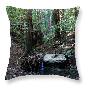 Corte Madera Creek Throw Pillow by Ben Upham III