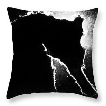 Cortez Seahorse Throw Pillow