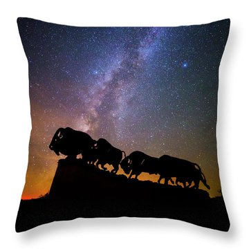 Throw Pillow featuring the photograph Cosmic Caprock Bison by Stephen Stookey