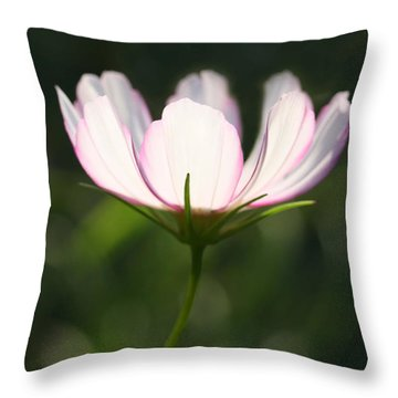 Cosmo Delicate Balance Throw Pillow