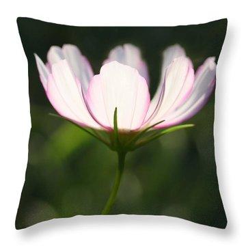 Cosmo Delicate Balance Throw Pillow