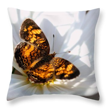 Pearl Crescent Butterfly On White Cosmo Flower Throw Pillow