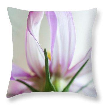 Throw Pillow featuring the photograph Cosmos 4 by Elena Nosyreva