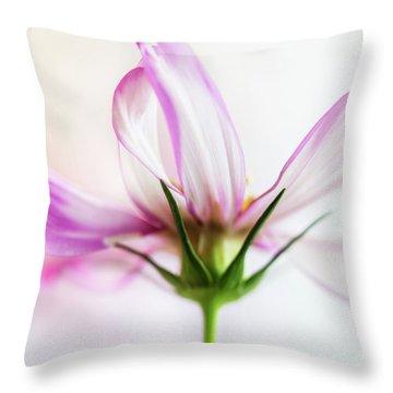 Throw Pillow featuring the photograph Cosmos 6 by Elena Nosyreva