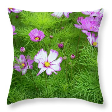 Throw Pillow featuring the photograph Cosmos Capriola by Tim Gainey