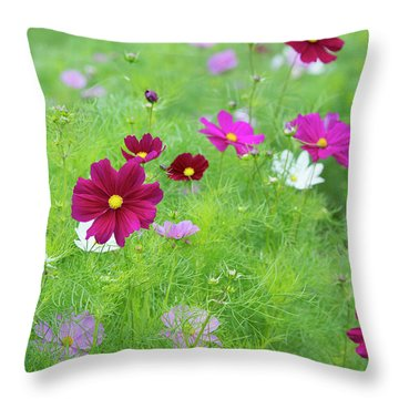 Throw Pillow featuring the photograph Cosmos Gazebo Flowers by Tim Gainey
