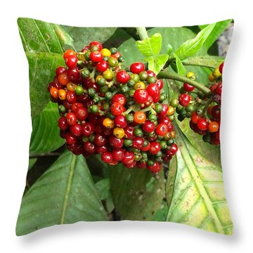 Costa Rican Berries Throw Pillow