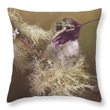Costas Hummingbird Painted Throw Pillow