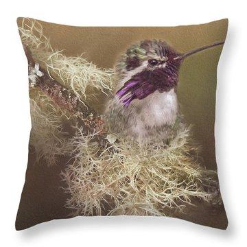 Costas Hummingbird Painted Throw Pillow