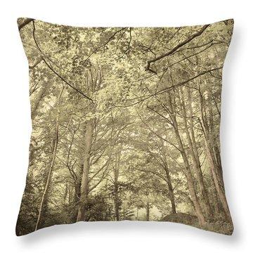 Cosy Path Throw Pillow by Svetlana Sewell
