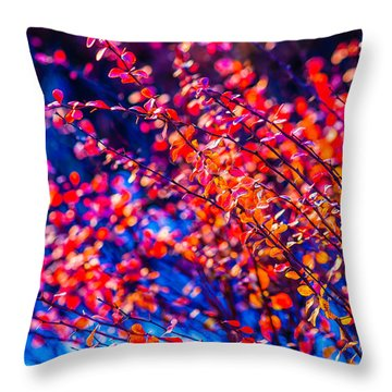 Throw Pillow featuring the photograph Cotoneaster In Winter by Alexander Senin