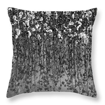 Cotton Abstract In Black And White Throw Pillow