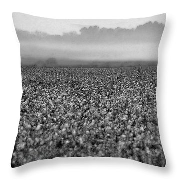 Cotton And Fog Throw Pillow by Michael Thomas