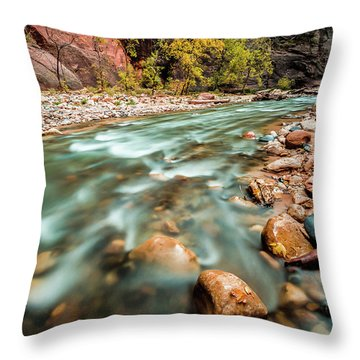 Cotton Colors Throw Pillow