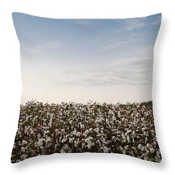 Cotton Field 2 Throw Pillow