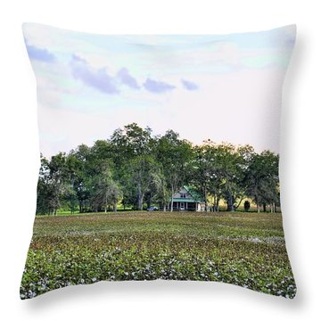 Throw Pillow featuring the photograph Cotton Field In Georgia by Jan Amiss Photography