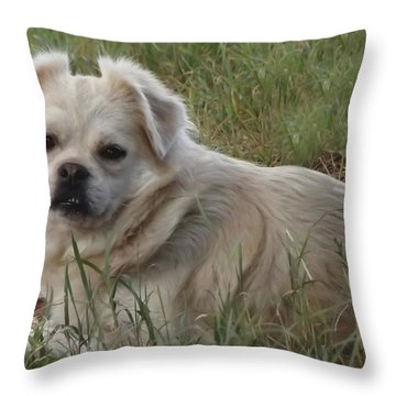 Cotton In The Grass Throw Pillow