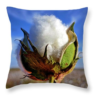 Throw Pillow featuring the photograph Cotton Pickin' by Skip Hunt