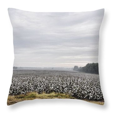 Throw Pillow featuring the photograph Cotton Under The Mist by Jan Amiss Photography