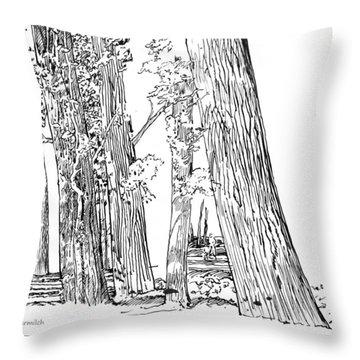 Cotton Woods Creve Coeur Path Throw Pillow by John Lautermilch