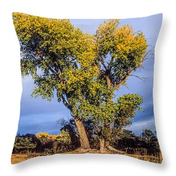 Cottonwood #4 Fall Ranch Colorado Throw Pillow