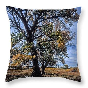 Cottonwood #5 Fall Ranch Colorado Blue Sky Throw Pillow