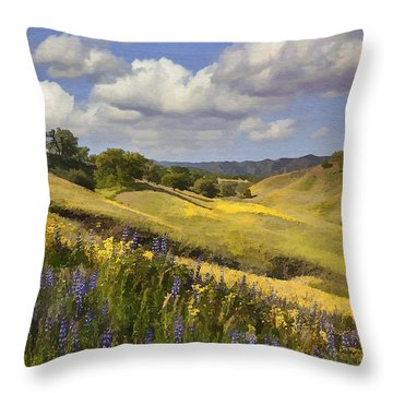 Cottonwood Canyon Throw Pillow