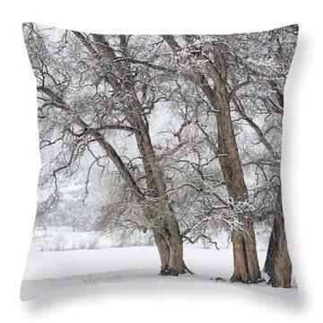 Cottonwood Companions Throw Pillow