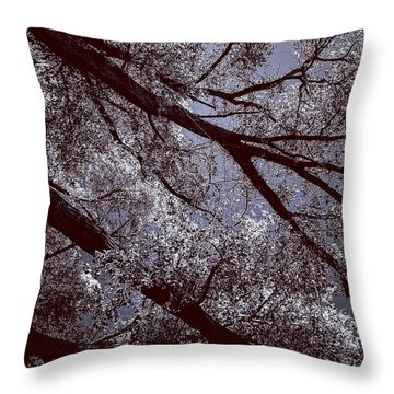 Cottonwood Energies Throw Pillow
