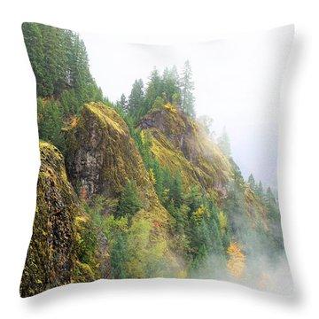 Cougar Reservoir Area Throw Pillow