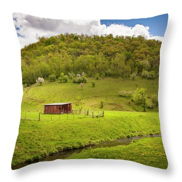 Coulee Morning Throw Pillow