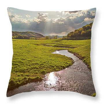 Coulee View Throw Pillow