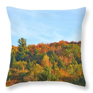 Couleurs D' Automne Throw Pillow by Aimelle