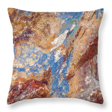 Couleurs De Cuivre I Throw Pillow by Karen Stephenson