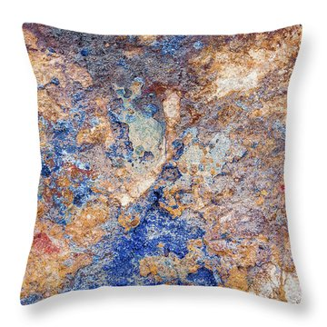 Couleurs De Cuivre II Throw Pillow by Karen Stephenson