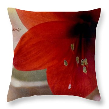 Throw Pillow featuring the photograph Count Your Blessings by Robin Dickinson