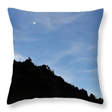 Counting Sheep Throw Pillow by Scott Cunningham