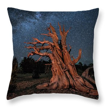 Throw Pillow featuring the photograph Countless Starry Nights by Melany Sarafis